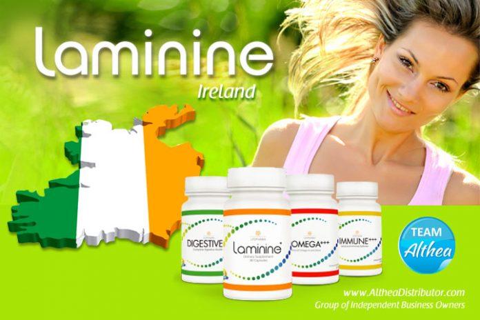 Laminine irish