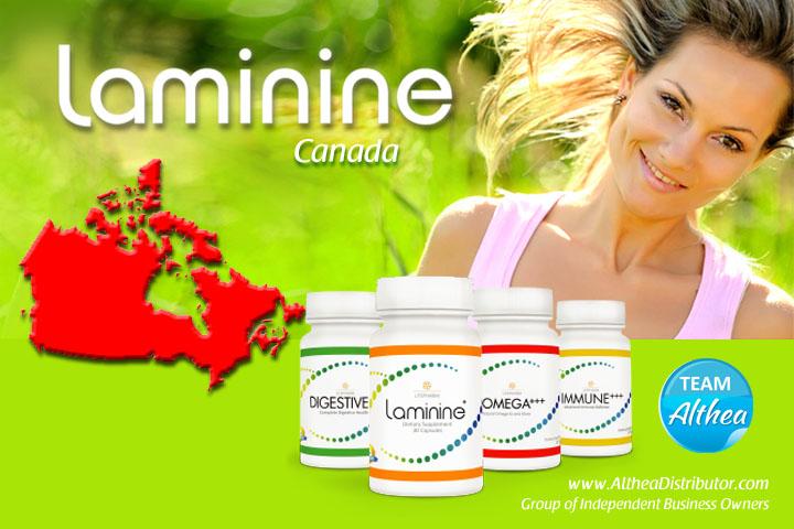 Buy Laminine  – Canada