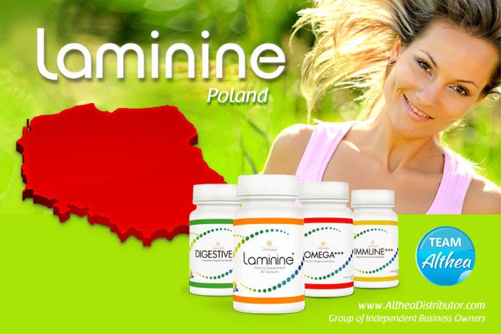 Buy Laminine  – Poland Polska
