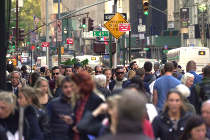 News Feed: Lamiderm Apex Skin Serum in New York